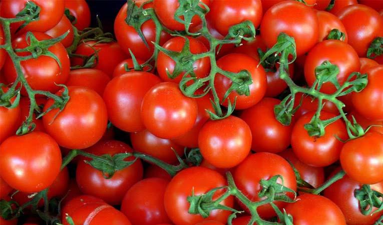 Irak'tan domates ithalatına fren
