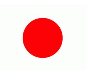 JAPON AİLE ŞİRKETLERİ NEYİ FARKLI YAPIYOR?