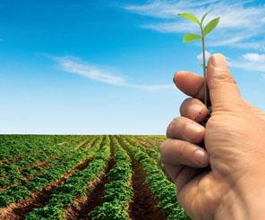 Tarım bankacılığı hızla büyüyor