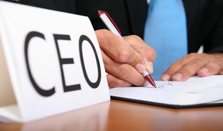 Türkiye'nin yıllanmış CEO'ları